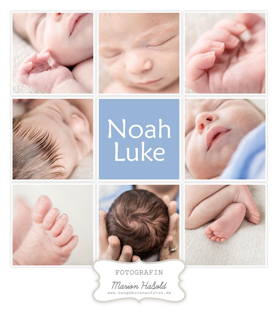 Details von Noah Luke