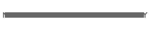 Webgrösse-500x100px-Grau