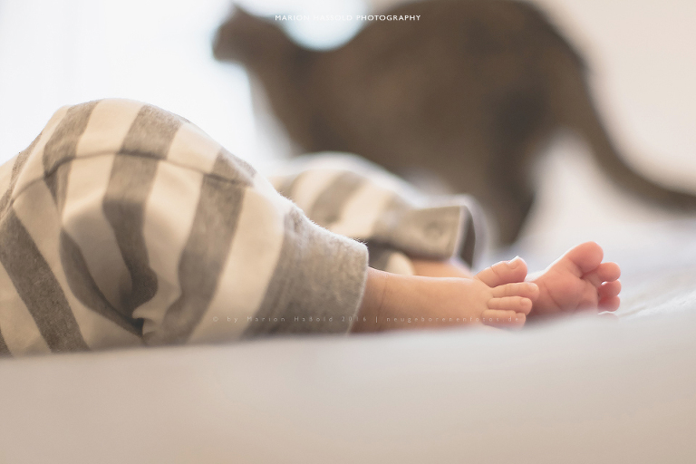 Lifestylefotos 3 Monate altes Baby
