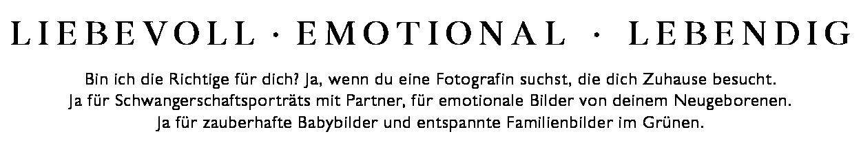 Website Neugeborenenfotos Startseitenbanner